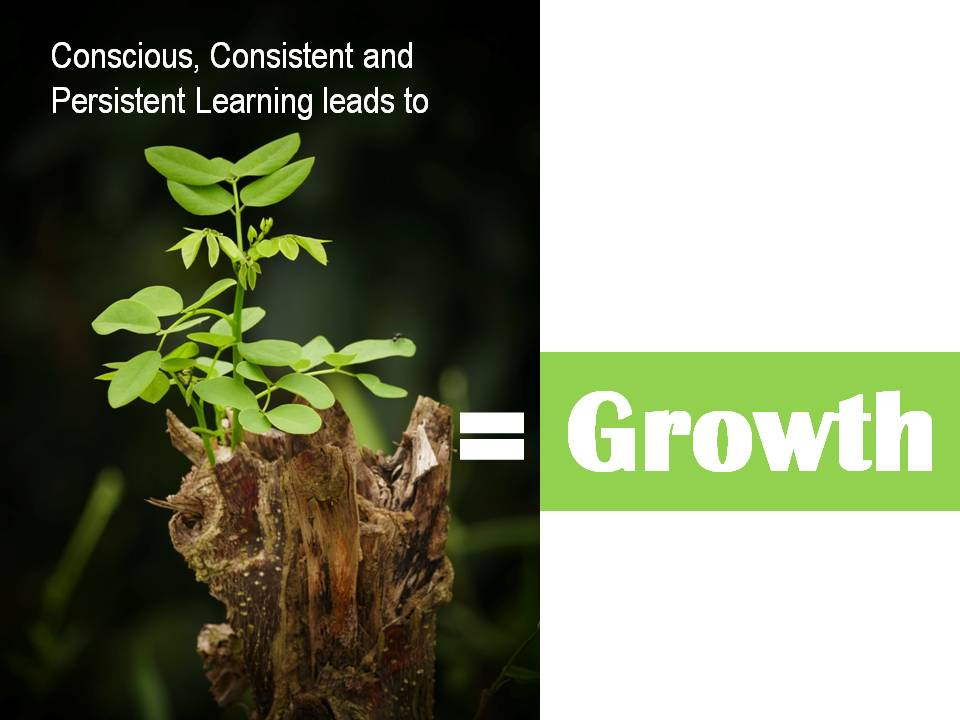 mindset for growth - growth
